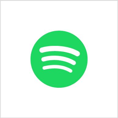 Spotify Account (Premium)