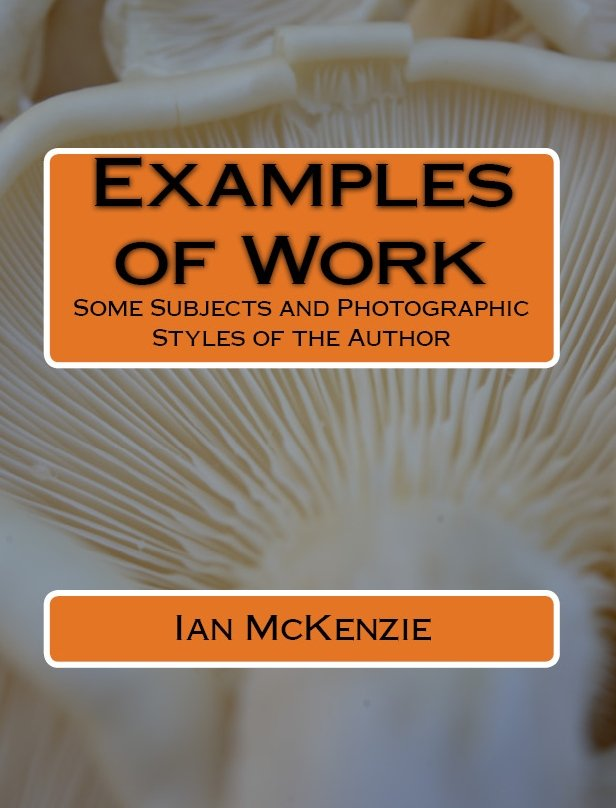 Examples of Work E-Book